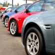 rgv renta de autos foto